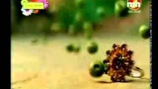 YouTube - Krishan - Sada Challa reh gya kalla.flv