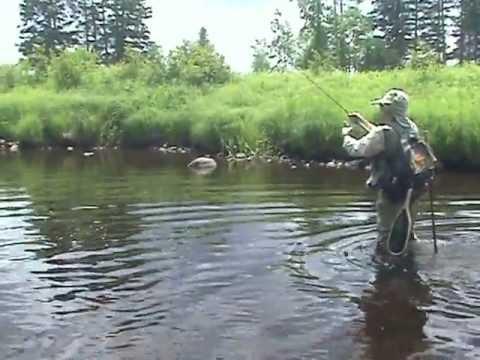 Smallmout bass creek fishing in wisconsin youtube for Fishing in wisconsin
