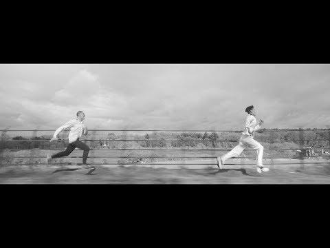 Palomino Party – Run Palomino