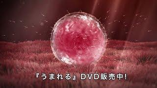 『うまれる ~いのちの授業~』教材DVDサンプル(あなたがうまれた物語) thumbnail