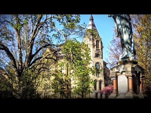 University of Notre Dame - 5 Things to Avoid