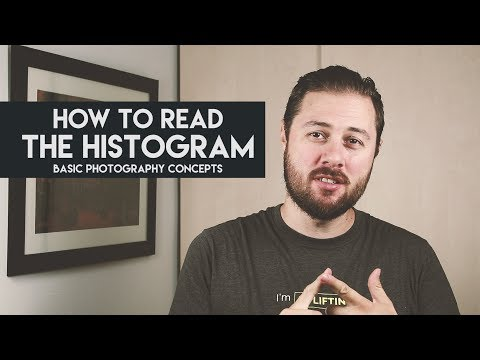 How to read the HISTOGRAM: Basic Photography Concepts