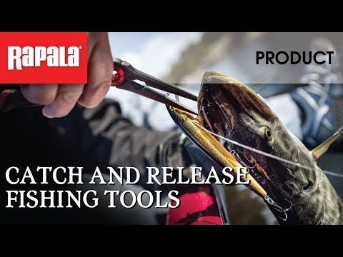 Catch And Release Fishing Tools | Rapala Fishing Tips
