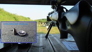 02. Precision Ballistics Mako Slugs 10.5 grain range tests