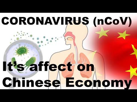 China's Coronavirus Explained, Origin, Symptoms, Human Transmission, Impact On Economy