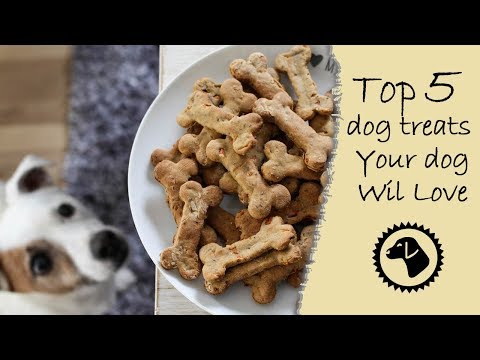 Top 5 Best Dog Treats Your Pup will Love