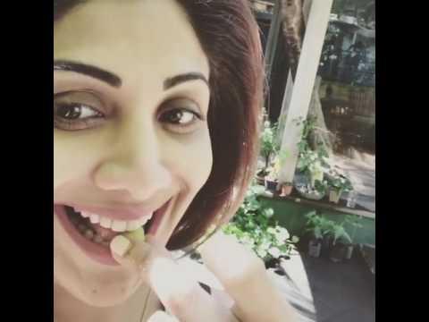 Shilpa Shetty Kundra eating Fresh Amla from her Garden