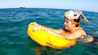 Египет 2020 Какой риф круче Albatros palace hurghada Albatros beach