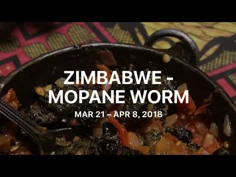 Zimbabwe - Mopane Worms