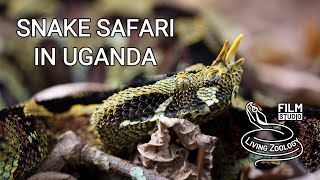 Snake Safari in Uganda (wildli…