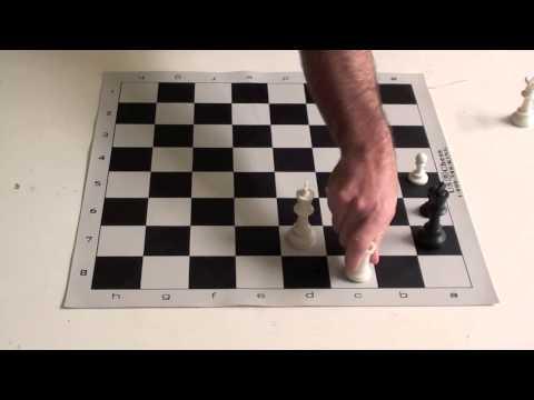Chess Tutorial #16 Triangulation-Opposition