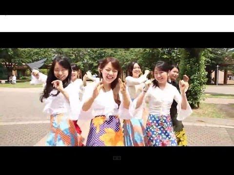 788a1521f8 TUFS HAPPY – 東京外国語大学PV | DAIGAKU.TV TIMES