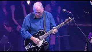 """Comfortably Numb"" solo - David Gilmour, Royal Festival Hall"