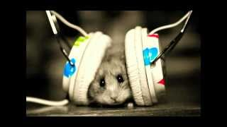 Michel Teló - Ai Se Eu Te Pego oficial Hamster ( xXx TASER26 xXx )