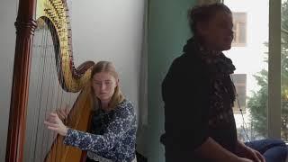 Love Will Tear Us Apart - Nerina Pallot - Harp/Voice