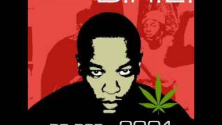 Dr Dre   The Message Feat  Mary J  Blige & Rell