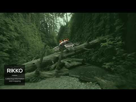 Forest Ranger Druids - פרויקט גמר המחלקה לעיצוב תעשייתי | שגב כספי