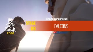 Dakar 2020 - Stage 9 - Falcons