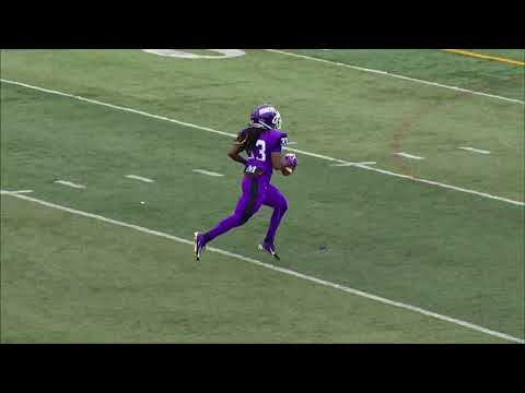 Louis Berry Mount Union Highlights