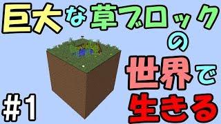 【マインクラフト】#1 巨大ブロックの世界で生きる ~優しい世界~ thumbnail