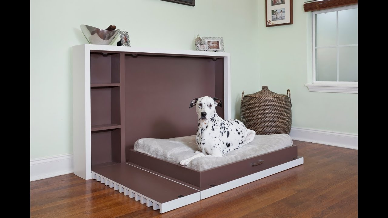 Murphy Dog Bed Demonstration - YouTube