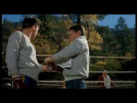 "Elvis Presley - Scene from ""Kid Galahad"" (Mirisch Company 1962)"