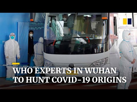 WHO health experts arrive in Covid-19 epicentre Wuhan to investigate origins of coronavirus