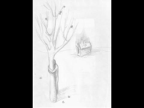 """Анализ рисунков. Проективная методика: """"Дом, дерево, человек"""". Часть 1"""