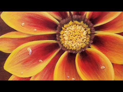 Yellow Gazania Flower LIVE Acrylic Painting Tutorial