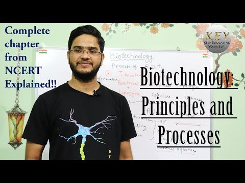 Biotechnology: Principles And Processes Class 12 NCERT In Hindi/اردو
