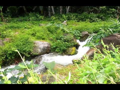 Roseau Riverside Property