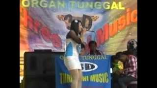 Organ Tunggal Triping Ngamen 5 by eeng