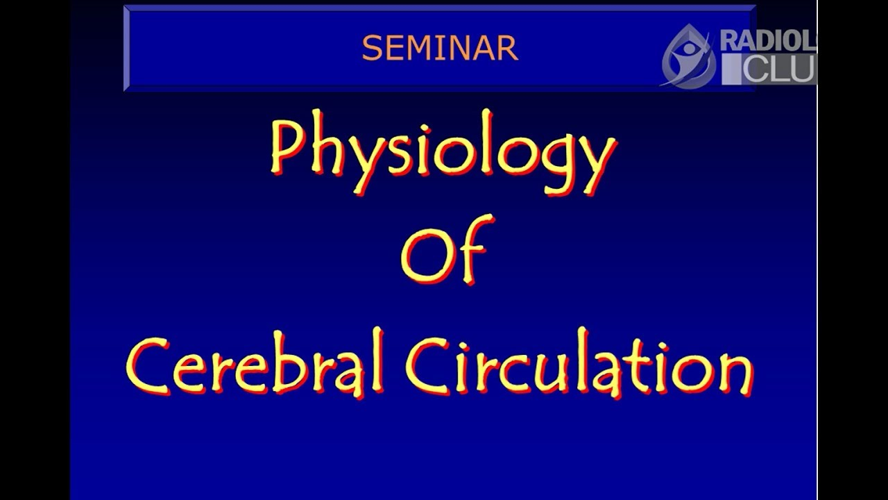 Cerebral Circulation - Physiology and Neuro Radiology Anatomy ...