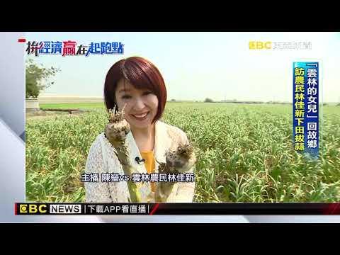 「雲林的女兒」回故鄉 訪農民林佳新下田拔蒜