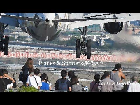 Planes & Spotters @TSA 2