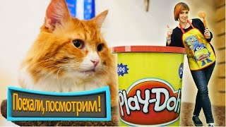 КОТИКИ и Маша #КапукиКануки 🐈 Играем с Плей До 👉 Новая серия Поехали, Посмотрим! Кошачье КАФЕ 🐱