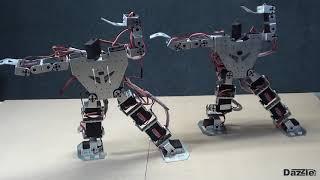 Programmable Humanoid Robot Arduino Compatible - Robot Gymnastics