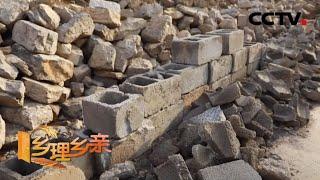 《乡理乡亲》 20200517 心里的影壁墙|CCTV农业