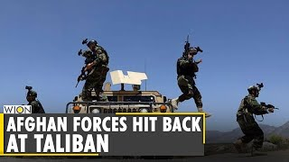 Afghan special forces, Taliban clashes in Herat   Afghanistan   WION Ground report   English News