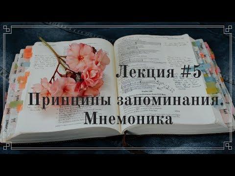 #5 Принципы запоминания. Мнемоника