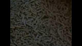 Fabricacion máquina pellets alimento balanceado, 5mm para conejos, aves y animales pequeños
