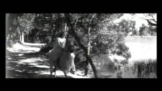 O Crime de Aldeia Velha (Portugal, 1964), Manuel Guimarães 2