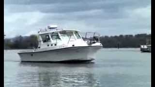 Really Rare 28' Albin Diesel Sportfishing Express Cruiser Boat Video