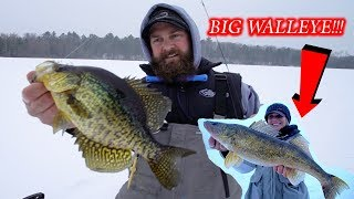 Northwoods Early Ice Panfish / Tip Up Fishing Walleye