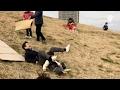 荒川土手で子供も大人も楽しむ 土手滑りイベント