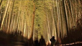 【タイムラプス(微速度撮影)】 京都・嵐山花灯路2013 Time Lapse, Kyoto Arashiyama Hanatouro 2013 (2013.12)