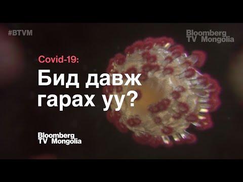 COVID-19: Бид давж гарах уу? | Bloomberg TV Mongolia тусгай хөтөлбөр