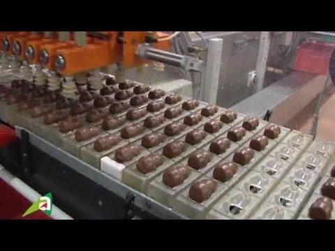 L'agroalimentaire : les métiers du chocolat