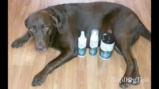 Zogics Dog Grooming Supplies Review