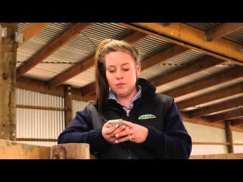 Silver Fern Farms Online Diary with mobile app